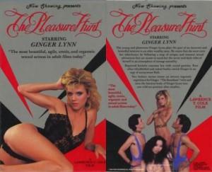 Pleasure Hunt – americký porno film
